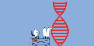 Images of scientists and genome to show New research briefing on human germline genome editing