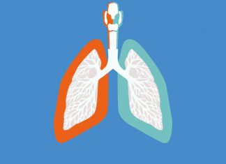 image of lungs, the left lung is bordered by orange, the right by blue to show AstraZeneca's Tagrisso▼ (osimertinib) rejected by NICE for use in NHS England