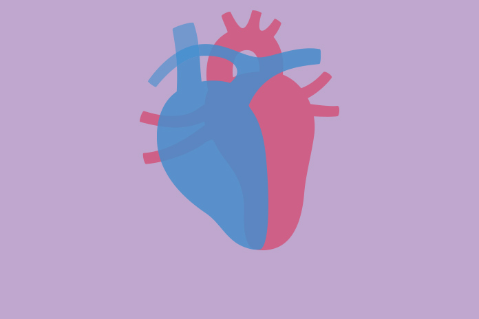 Image of a heart to show The hidden costs of heart failure on the NHS