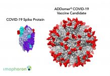 Image of COVID-19 spike proteint and ADDomer COVIDE-19 vaccine candidate to show New vaccine platform used to develop COVID-19 vaccine candidates