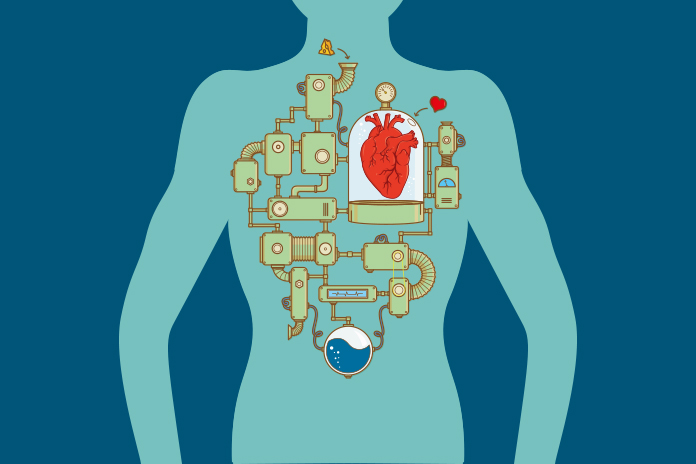 Image of a heart in the body operating as a machine with mechanical parts coming off of it to show Bridging the gap in heart failure awareness